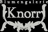 Blumengalerie Knorr – Ihr Blumenladen 2x in Baden-Baden